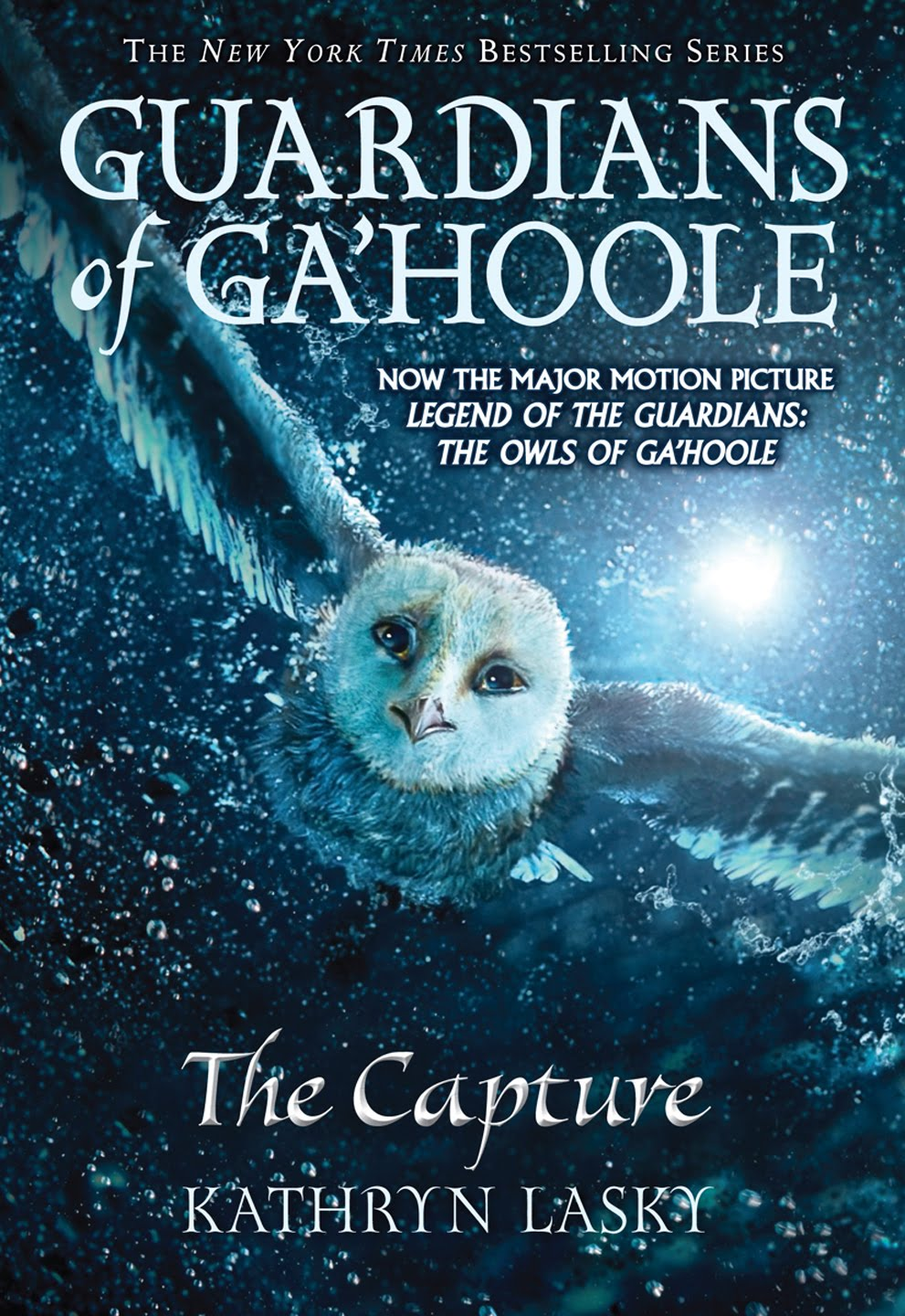 guardians of gahoole the capture book report