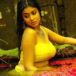 South Indian Hot Actress Shreya Exclusive Photo Shoot - part I