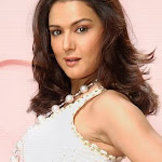 North Indian Actress Preity Zinta Wallpapers,profile,biography,filmography