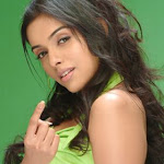 South Indian Actress Asin Wallpapers,profile,biography,filmography
