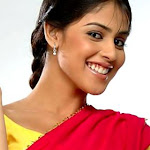 South Indian Actress Genelia D'souza Wallpapers,profile,biography,filmography