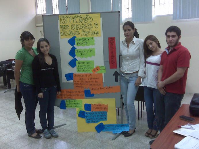 8vo. Proceso: PLANTEAMIENTO Y VERIFICACIÓN DE HIPÓTESIS