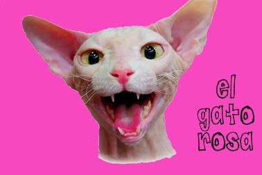 El gato rosa