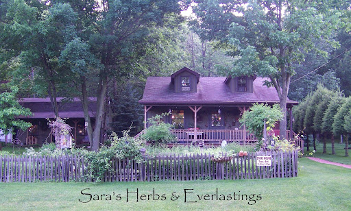 Sara's Herbs and Everlastings