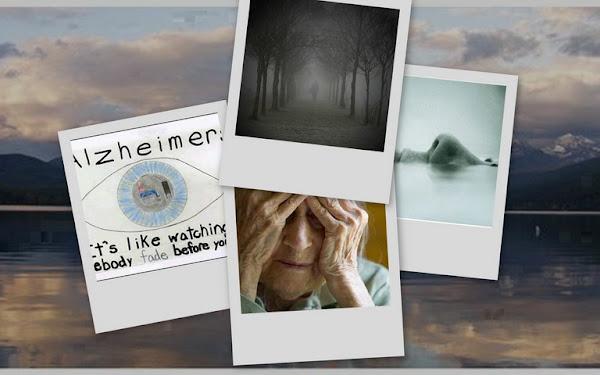 Benadryl and altzheimers