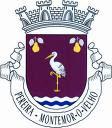 Bandeira da Vila de Pereira