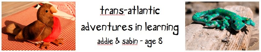 Trans-Atlantic Learning Adventures