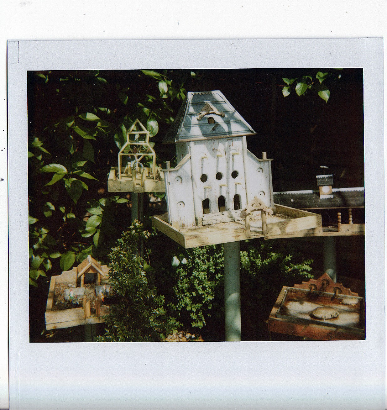 [bird+chateau]