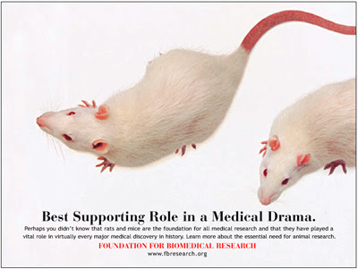 an argument against animal experimentation for medical research All drugs and some chemicals are tested on animals before humans, but no  to  end animal testing already underway for ethical and practical reasons  medical  schools, including those at the university of maryland and at.
