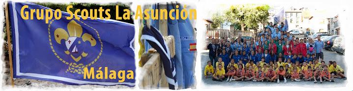 Scouts La Asunción
