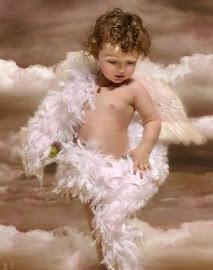 QUIEN ES MI ANGEL? LA WEB