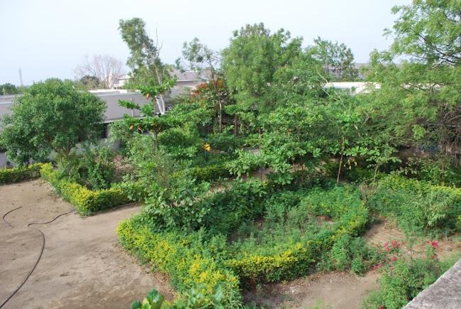 House Gardens (2)