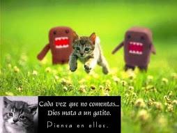 Por los gatitos