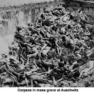 Image result for фото трупы освенцима
