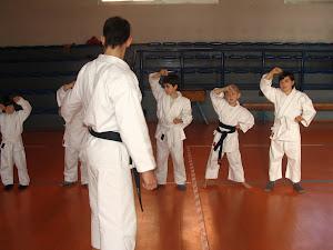 Istruzione Fondamentali di Karate