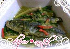 resep masakan ikan lele untuk anak
