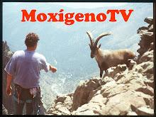 MoxigenoTV