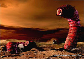 Mahluk Misterius Pembawa Maut Gurun Gobi