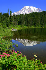 Mt Rainier in Reflection Lake