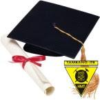 Pojok Alumni