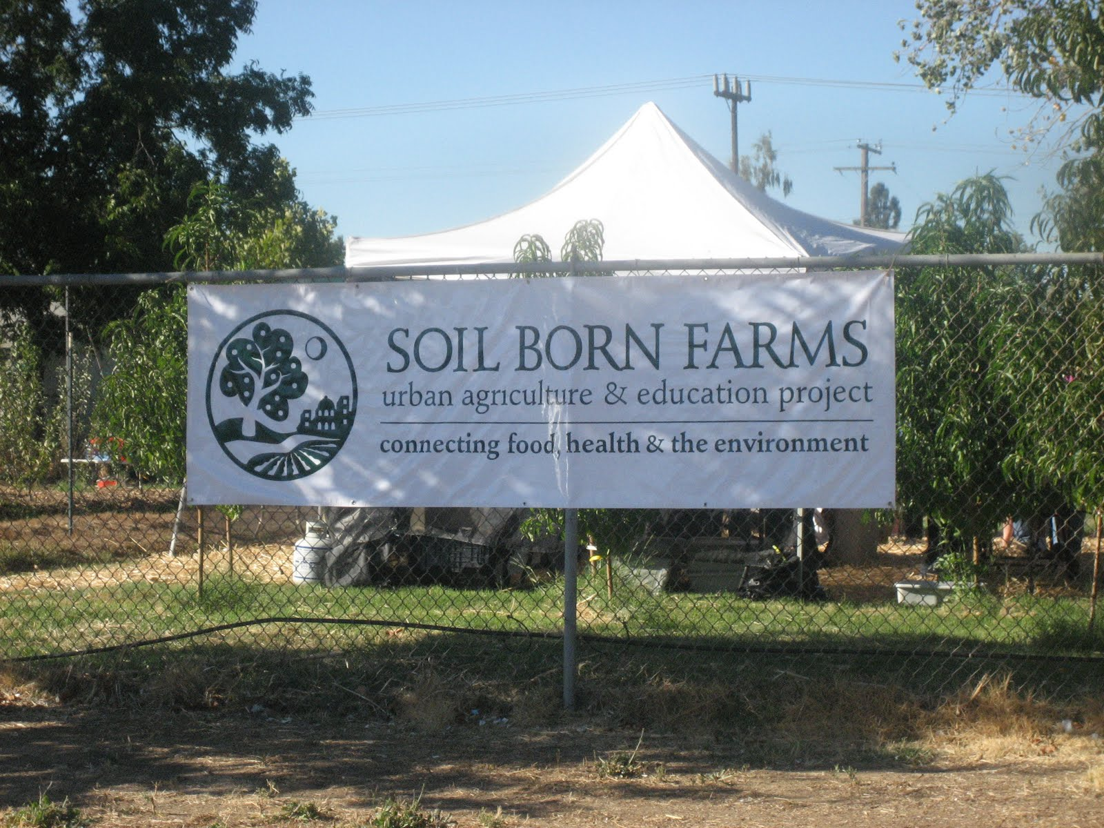 The bounty of soil born farms a worthy cause by any for Soil born farms
