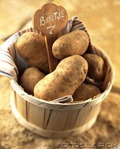 Tentaciones varias ensalada de patata - Cuanto tarda en cocer una patata ...