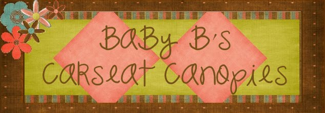 Baby B's Carseat Canopies
