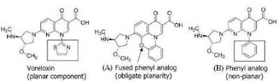 Voreloxin derivatives, SAR study