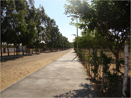 AV. PARQUE NORTE, AO LADO DO BOSQUE