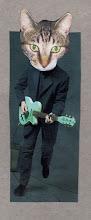 Progatto chitarrista