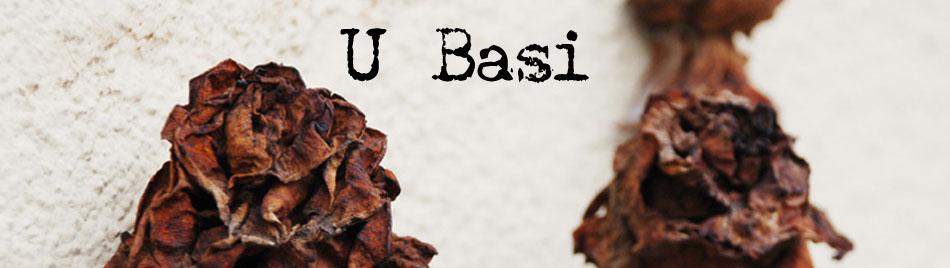 U Basi