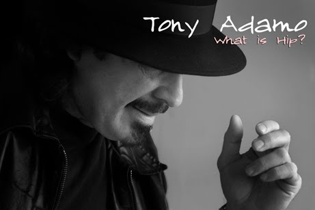 Tony Adamo What is Hip