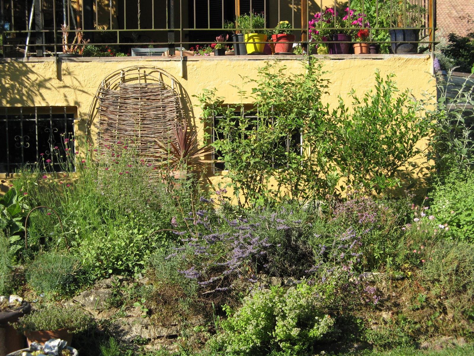 Le jardin de brigitte alsace le premier jour du blog - Les jardins d alsace ...