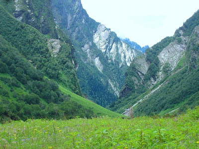Auli Valley During Summer