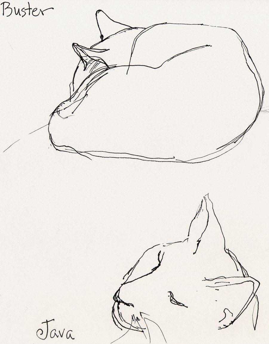 Line Drawing Of Yourself : Susan sorensen don t erase