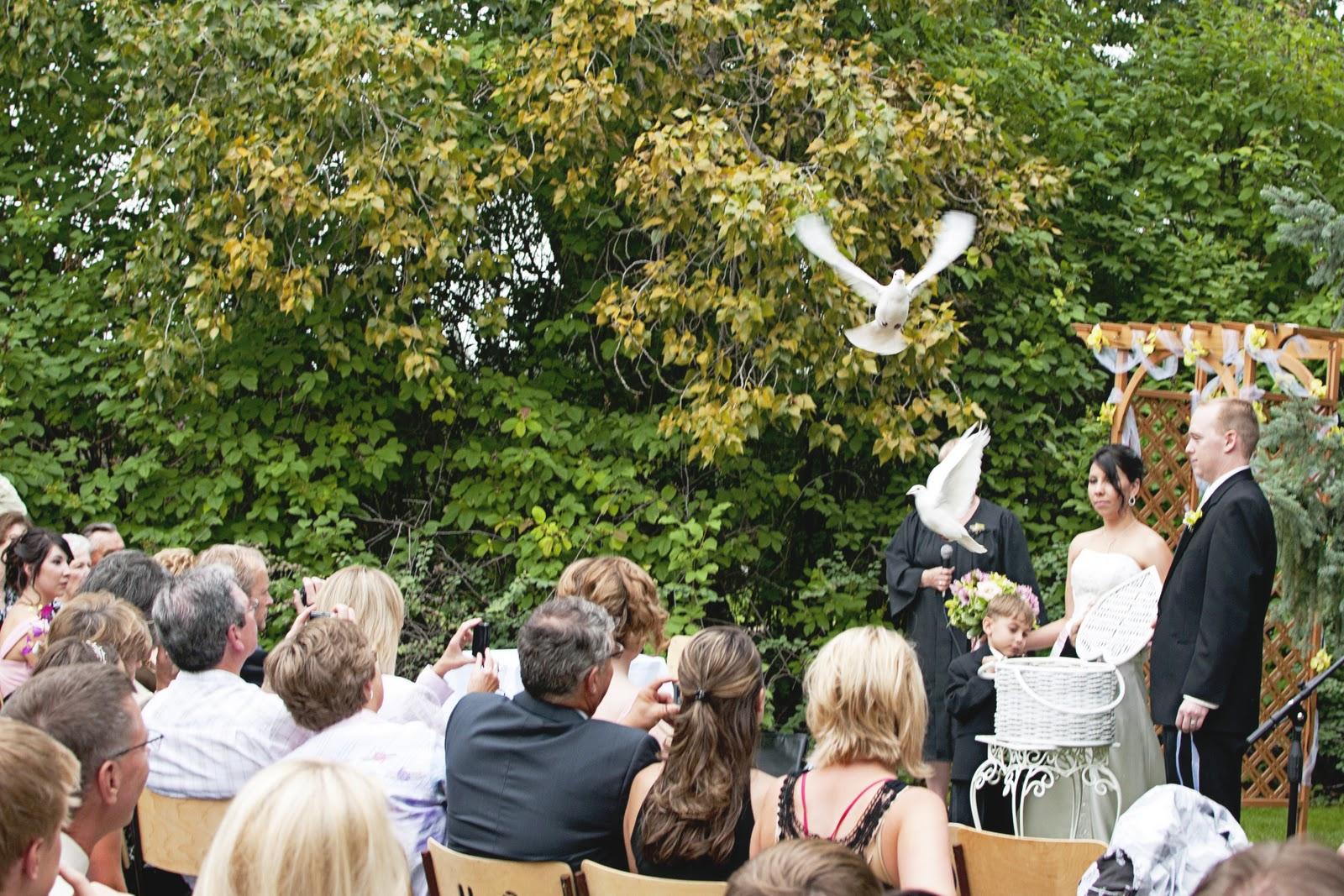 Saskatoon Wedding Photographer Amanda Jonathan