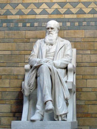 Charles Darwin statue