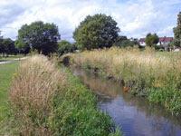 River Lea - Leagrave