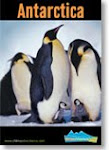 Antarctic Travel Brochures