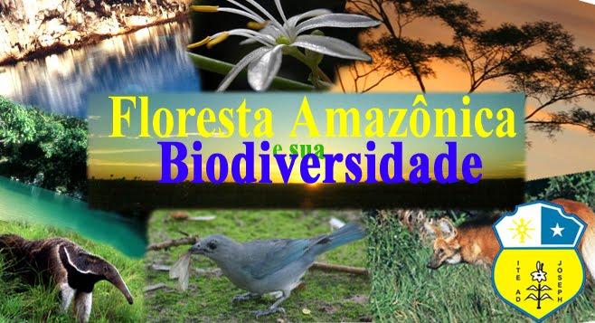 Floresta Amazônica e sua Biodiversidade