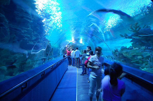 an interesting place in malaysia Everywhere has been great, but kuala lumpur is our pick for the best place for a  family trip in malaysia we have just loved our stays here, partly because of.