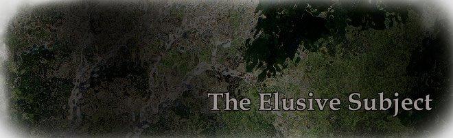 The Elusive Subject
