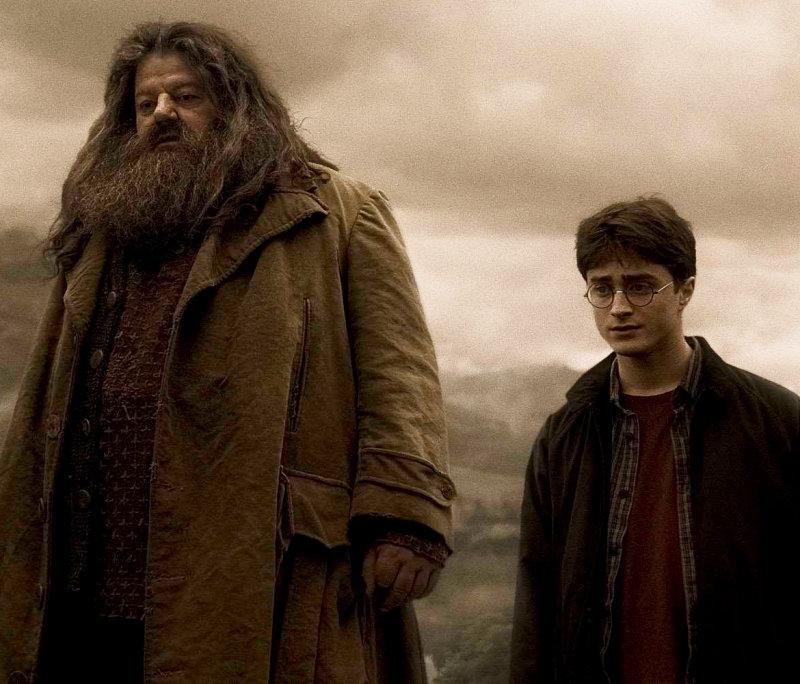 ... Harry Potter Birthday Party moreover Harry Potter Hagrid Birthday Cake