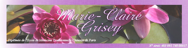 Marie-Claire Grisey - Massage Chinois