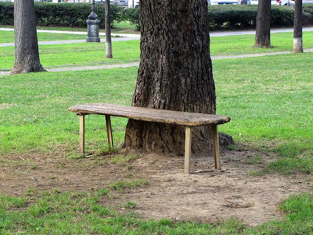 Worn out bench, Piazza della Vittoria, Livorno