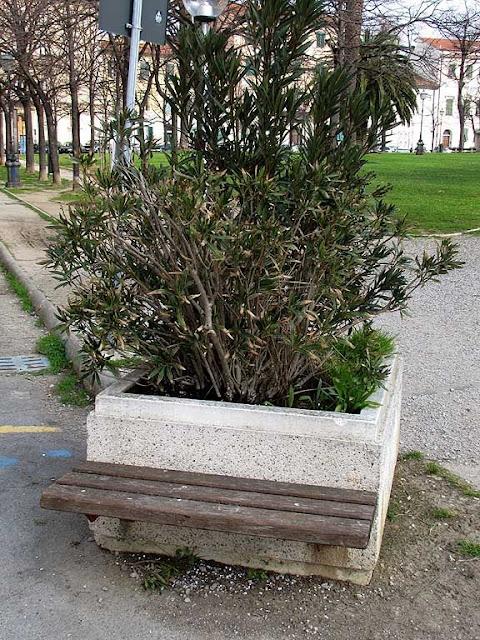 Stub of a bench, piazza della Vittoria, Livorno