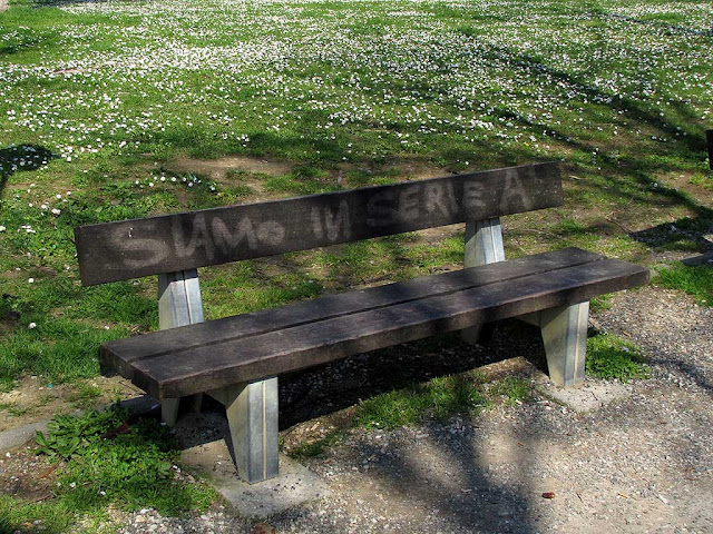 Bench with daisies in background, We're in First Divison, Livorno