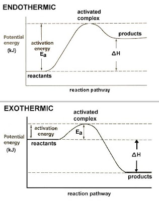 exothermic versus endothermic Endothermic reactions increase their enthalpy by absorbing heat exothermic reactions decrease their enthalpy by releasing heat.