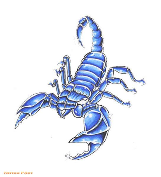 scorpion tattoo design. Scorpion Tattoo Designs