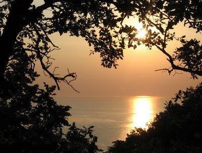 تأملت معنى الغروب heart-sunset.jpg